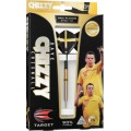 Target Dave Chisnall Gold